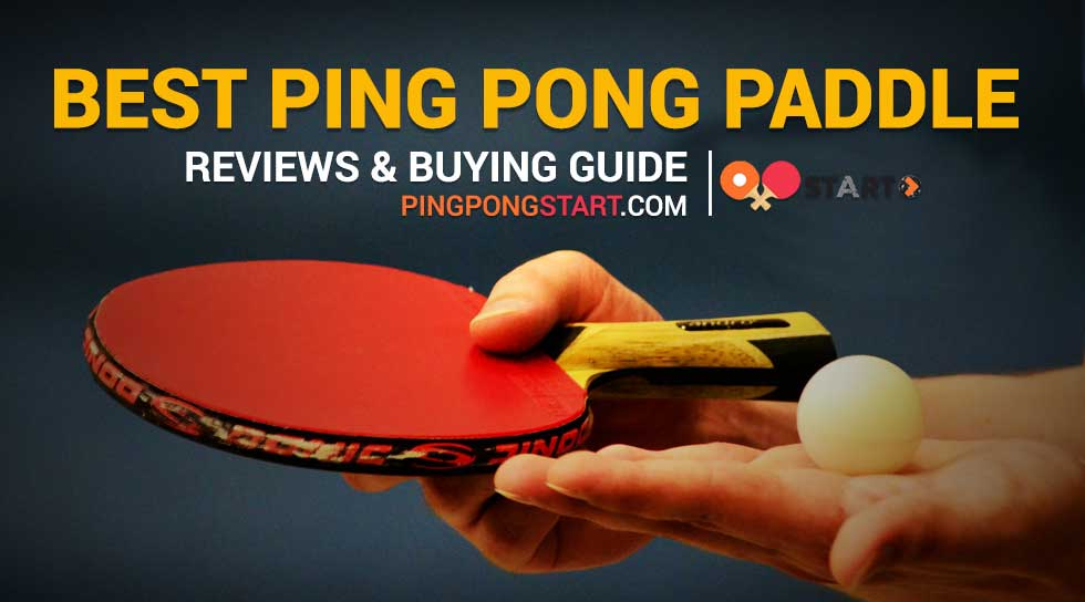 Enjoyable 8 Best Ping Pong Paddle Reviews Best Table Tennis Paddle Home Interior And Landscaping Spoatsignezvosmurscom