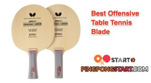 Best Offensive Table Tennis Blade