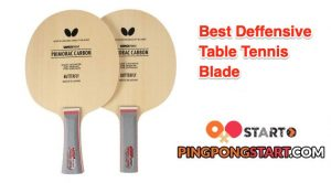best deffensive table tennis blade